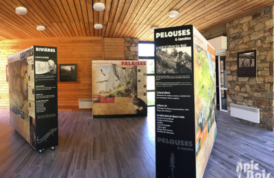 exposition-pibeste-aoulhet-pic-bois