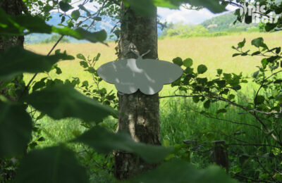 Maison du Parc Naturel Régional des Monts d'Ardèche, exposition Bio trésors des Monts d'Ardèche, silhouette en compact découpé, à retrouver dans le parc. ©Pic Bois