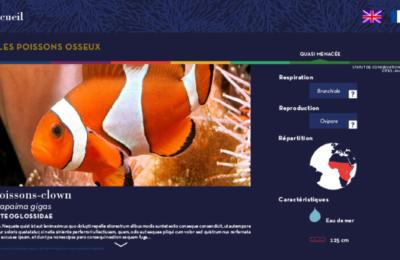 borne-interactives-digitalisation-aquarium-tropical-paris