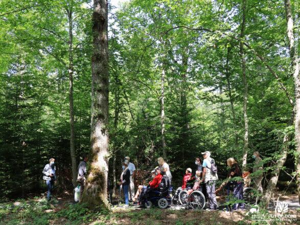 Un groupe de personnes à mobilité réduite, certaines avec béquille, d'autres en fauteuil roulant, se promène dans la forêt.