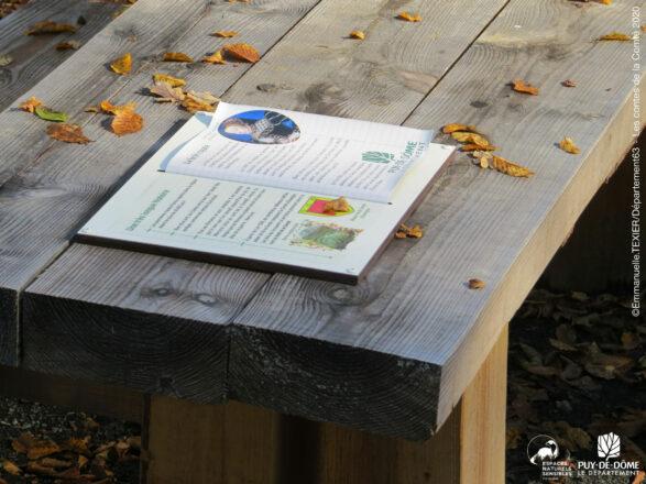 Un livre est posé sur une table de pique-nique.